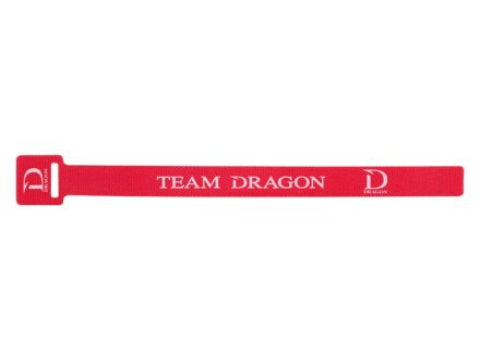 rod band Dragon