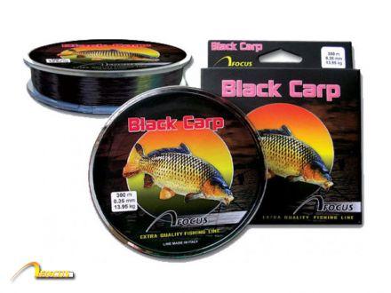 Focus Black Carp