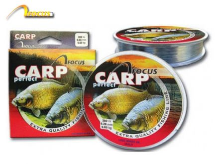 Focus Carp Perfect 300m
