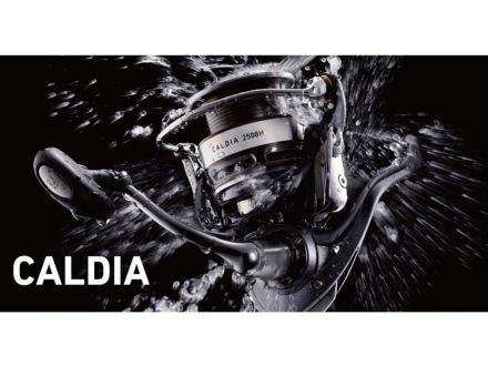 daiwa Caldia 3012 H
